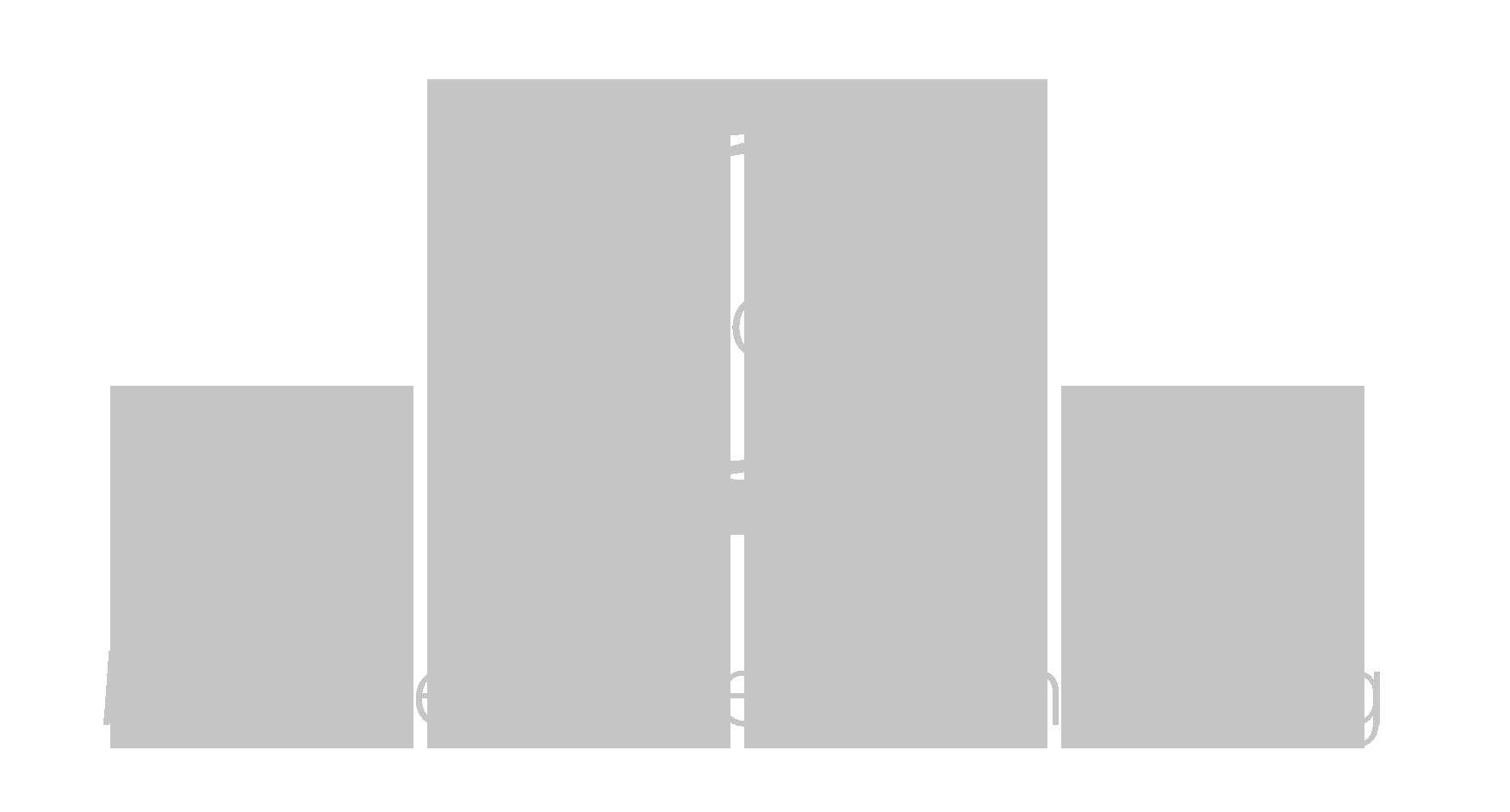 MdV_Logo_Schriftzug_grau_Vollflaeche